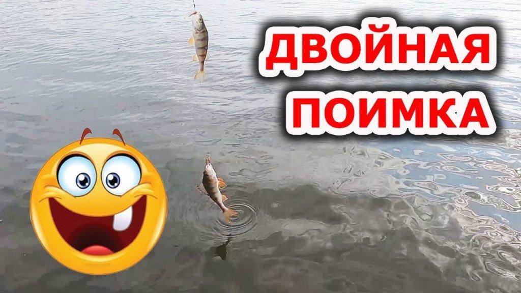 Интересно, почему он сдох... Рыбалка на озере. Ловля на спиннинг