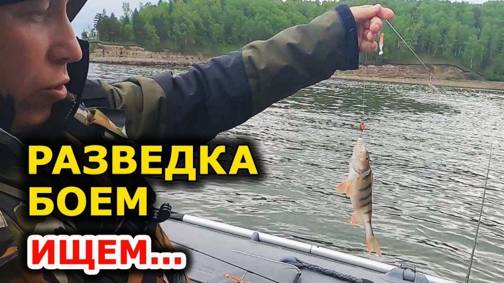 Еле поняли, почему клюёт, а не ловится! Рыбалка на спиннинг. Ловля окуня. Разведка по новым местам