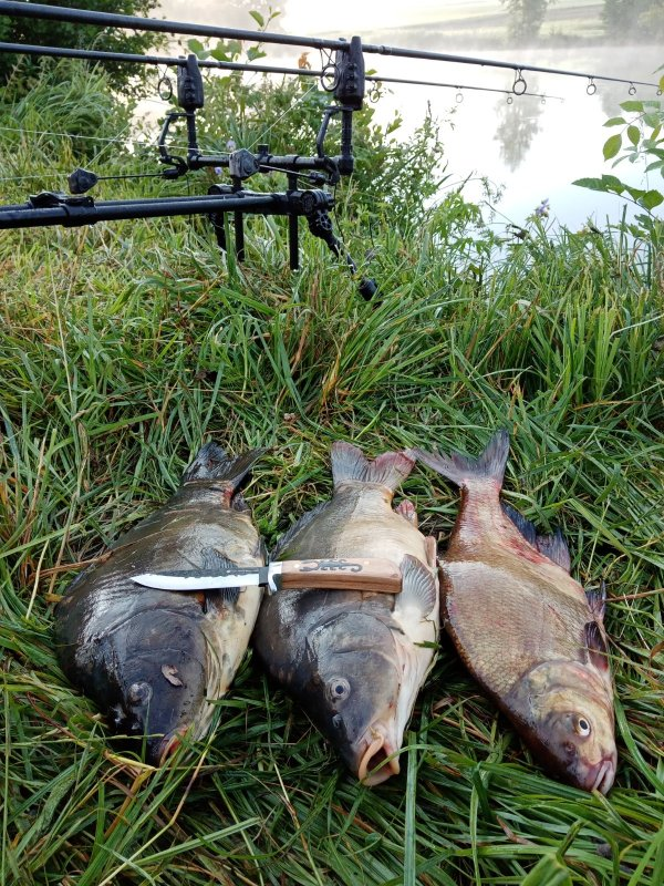 27 июня, на международный день рыбака. А сегодня 11 июля всех с днем рыбака! Ни хвоста вам и не чешуи!