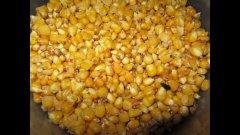 Прикормка из ферментированной кукурузы.
