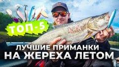 ТОП-5! Лучшие приманки НА ЖЕРЕХА ЛЕТОМ в жару / Рыбалка на Днепре 2021