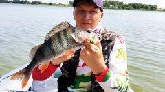 Рыбалка на спиннинг / Поиск хищника