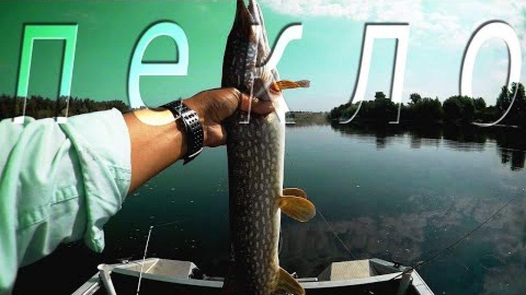 Рыбалка на ЩУКУ летом. Приманка на щуку в жару +40°С