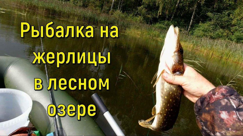 Рыбалка на жерлицы на лесном озере
