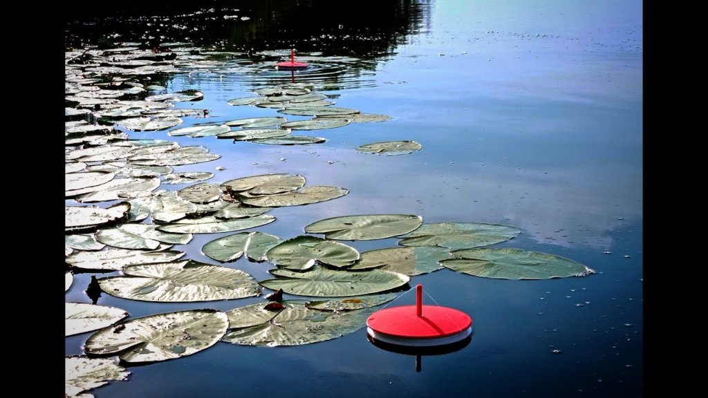 Рыбалка на КРУЖКИ(летние жерлицы)кружки на щуку