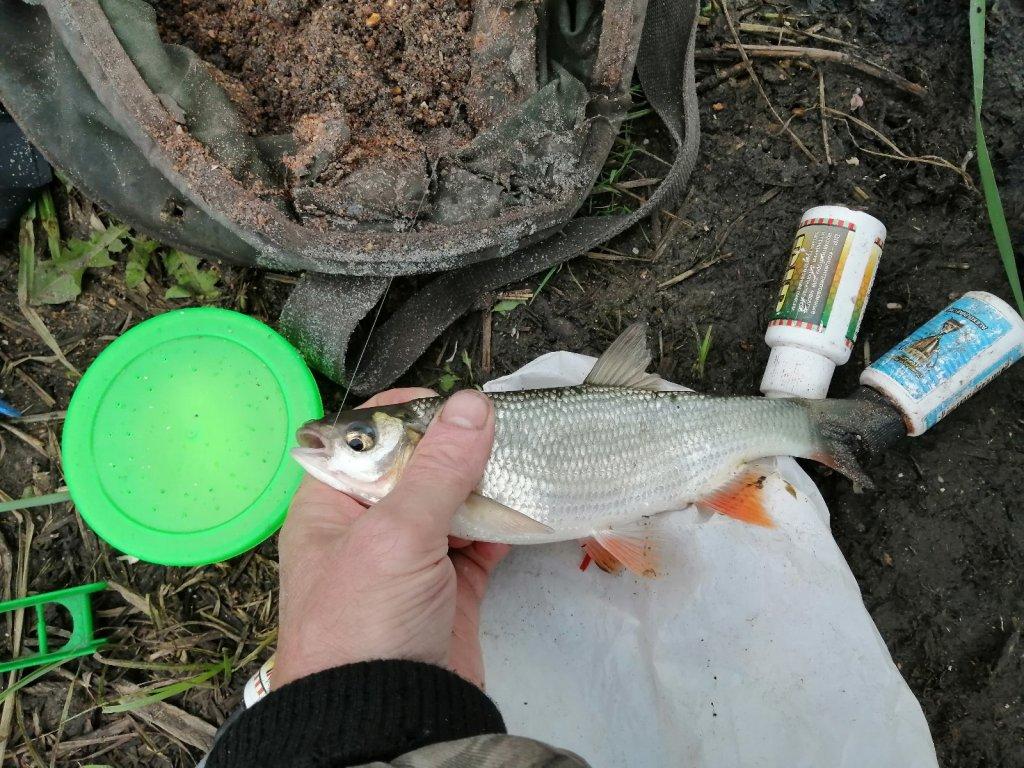 Сегодня на рыбалке.