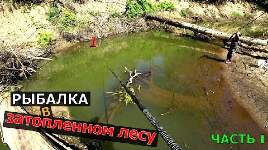 РУЧЕЙ ЗАБИТЫЙ РЫБОЙ  Рыбалка на поплавочную удочку с ночёвкой в тайге  Рыбалка 2021!