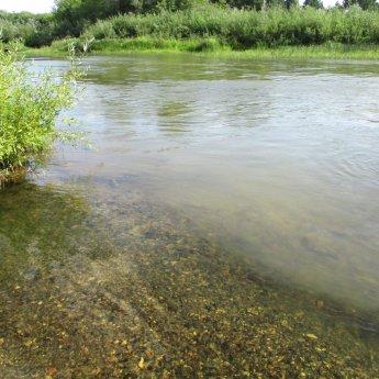 Речка Издревая впадает в Иню. Почувствуйте разницу воды.