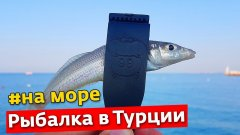 Рыбалка в Турции | Июль 2021 | Анталия, Белек