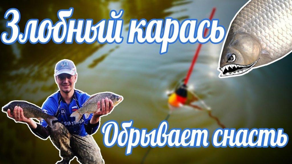 КАРАСИ ЛАПТИ РВУТ СНАСТИ / Ловля карася на поплавок / Рыбалка 2021.