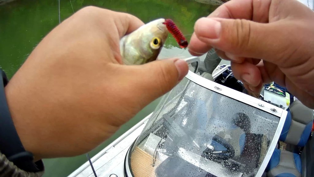 Рыбалка от Красного Яра до Пристань-Почты
