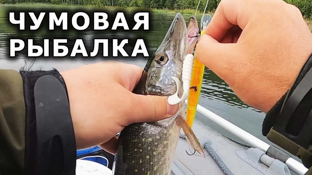 ЧУМОВАЯ РЫБАЛКА!!! 👍 40 щук😎😎😎, но... Ловля щуки на спиннинг. Рыбалка на щуку. Рыбалка на спиннинг