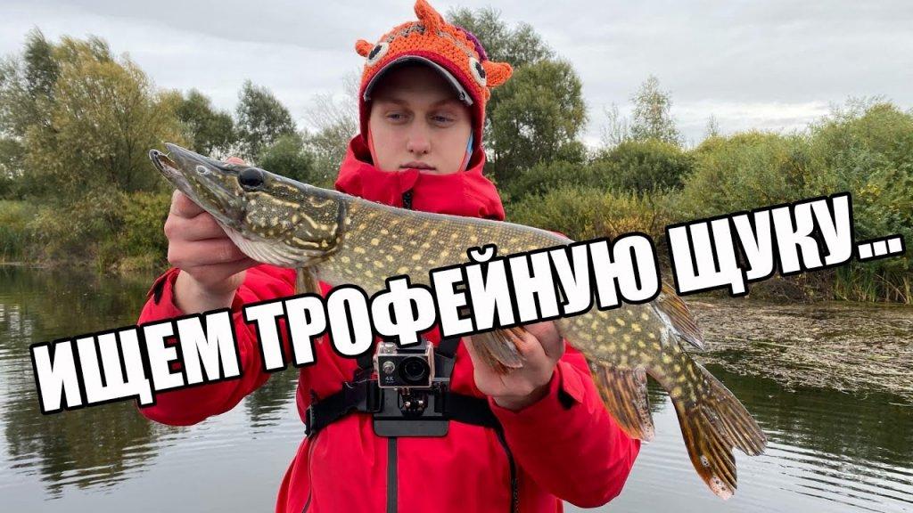 В поисках трофейной щуки! | рыбалка на пруду | ловля щуки осенью
