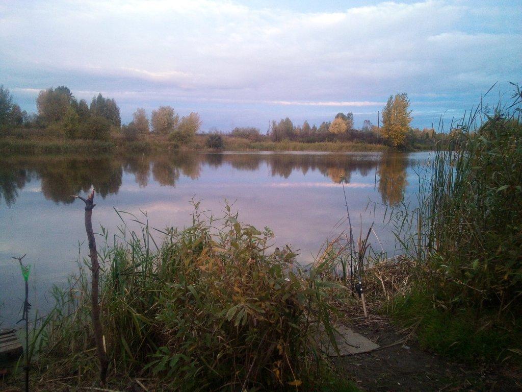 Воскресное утро в Криводановке.