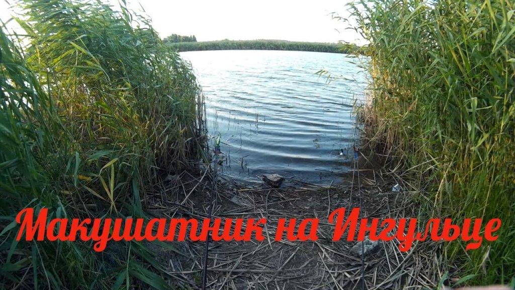 Рыбалка на макушатники. Ловля карася на макуху в августе. Рыбалка в реке.