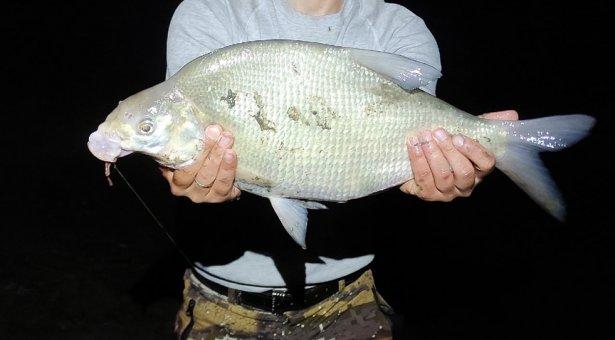 Вкусная рыбалка на леща и рецепт борща! Так на рыбалке меня ещё не кормили! Часть 1.