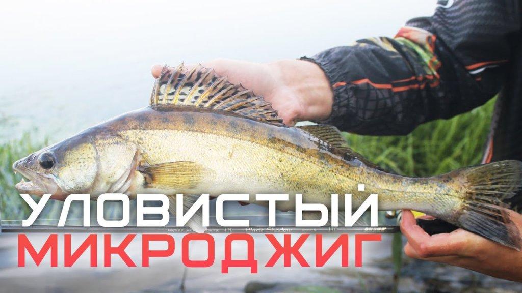 Уловистый осенний микроджиг / Рыбалка на окуня, щуку, судака и жереха