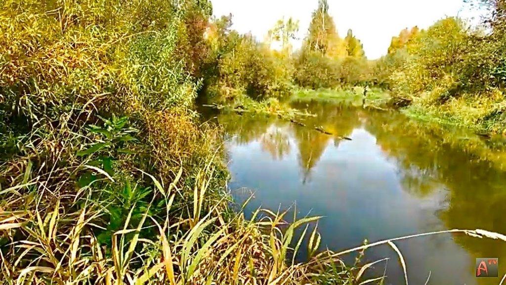 Такой рыбалки у меня ещё не было. Осень на Васюгане 2 серия. Рыбалка.