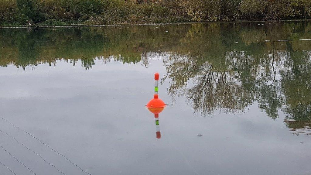 Ловля щуки на ЖИВЦА! Рыбалка на поплавок в октябре