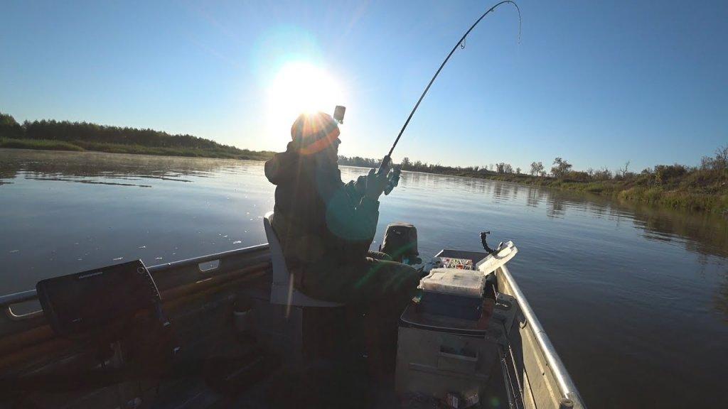 Ловля Судака в Корягах (Рыбалка 2021) | #Vovabeer