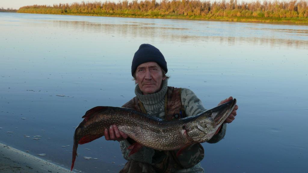 Календарь обского рыбака. Октябрь.