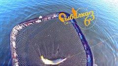 Эта хорошая щука спасла рыбалку, Рыбалка на щуку осенью на спиннинг