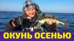 Рыбалка осенью. Ловим окуня в холодной воде. Рыбалка с друзьями - подписчиками