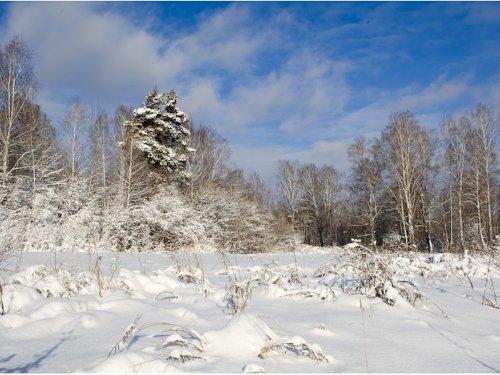 Зима пришла!