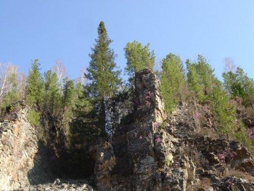 Алтайская весна.