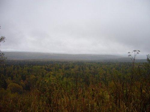 Одна из самых высоких гор Салаирского кряжа..г.Пихтовый гребень