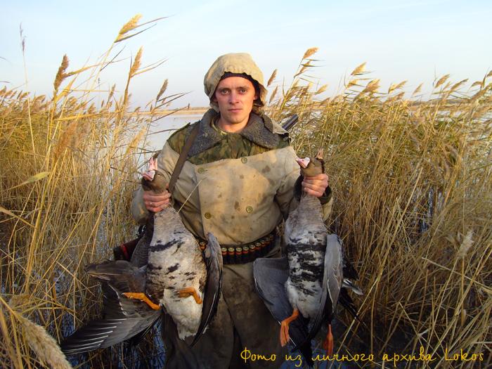 Вот так мой куманёнок(сын Кума) с дуплета 4 красавца.... 1 октября 2008. Что интересно утки не было вообще......