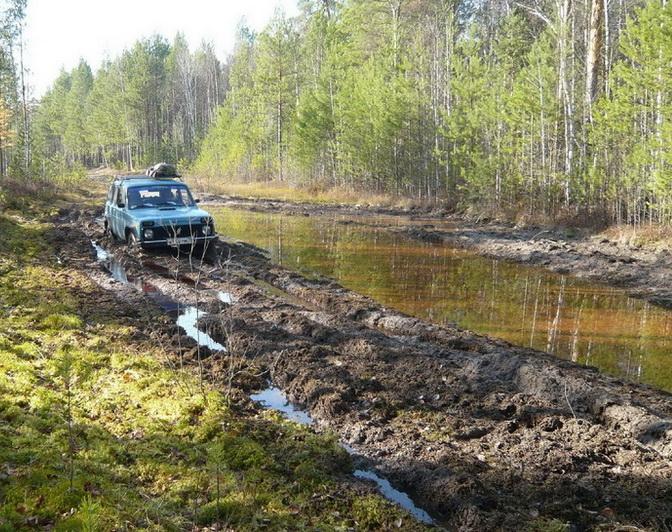 По обе стороны таёжное болото