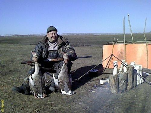 Алтайские гусики