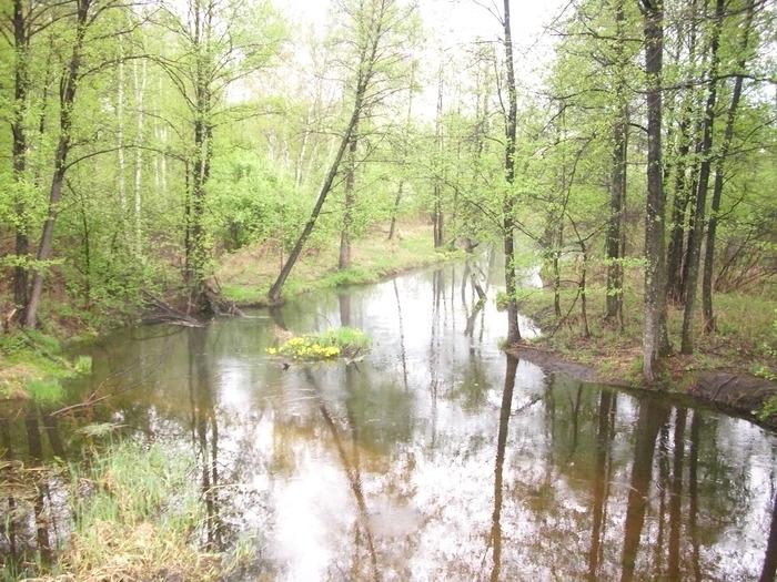 Чеченская республика, речка в районе села Гехи-Чу(на удивлеие спокойное течение было)