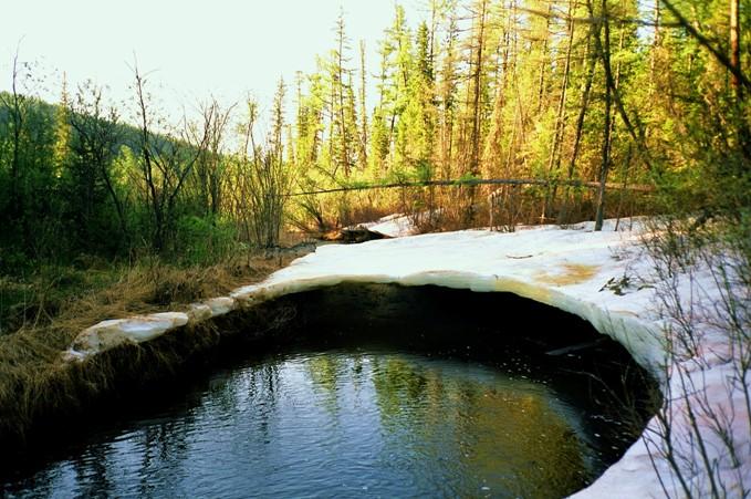 Речка Мокчениха, начало июня 2005 г.