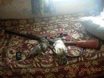 Мои первые ТРОФЕИ))) на Иж-26, хорошое было ружье(((