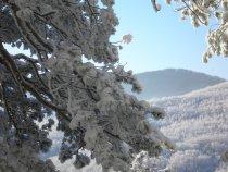 зима!краснодарский край!