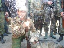 Волк из станицы Кировской