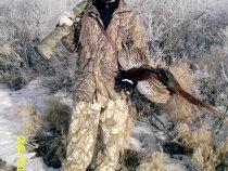 Тропил зайчика, а поднял фазана