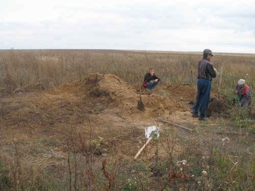 Общий вид на раскопки барсука