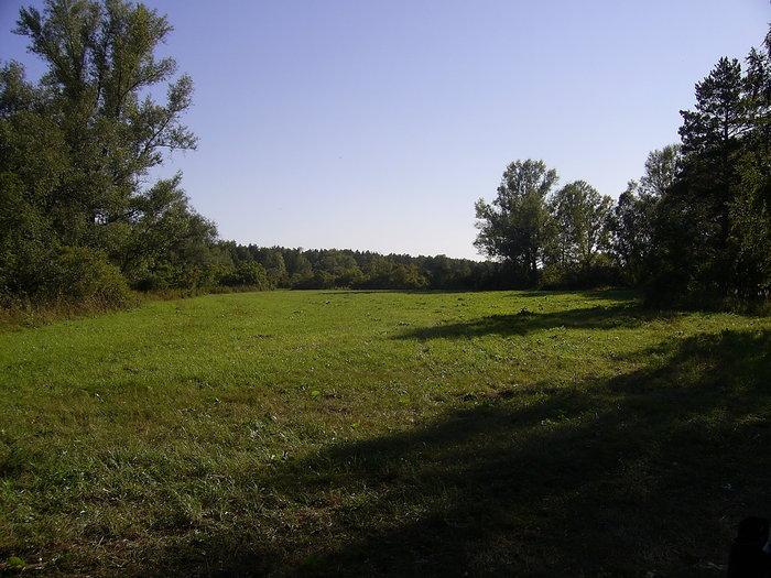 Зелёная поляна для нашего стана!