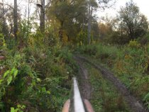 Осень в Трубочево