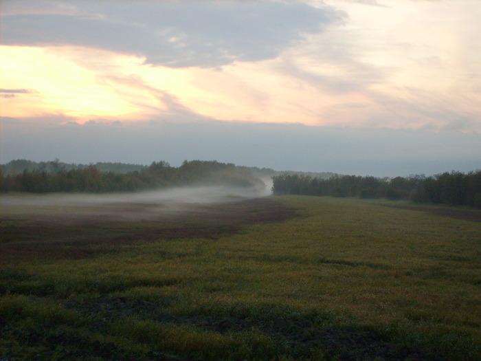"""Международный экологический фонд - """"Рамсарские угодья"""" - пойма Оби, 140 км от Х-Мансийска."""