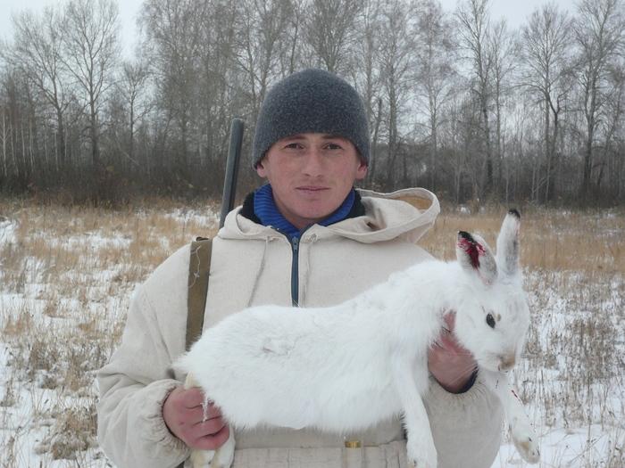 Быстрый заяц