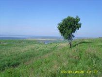 Озеро Ик.Крутинский район Омской области