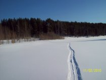 А лыжня тонкой ниткой вьётся!!!!