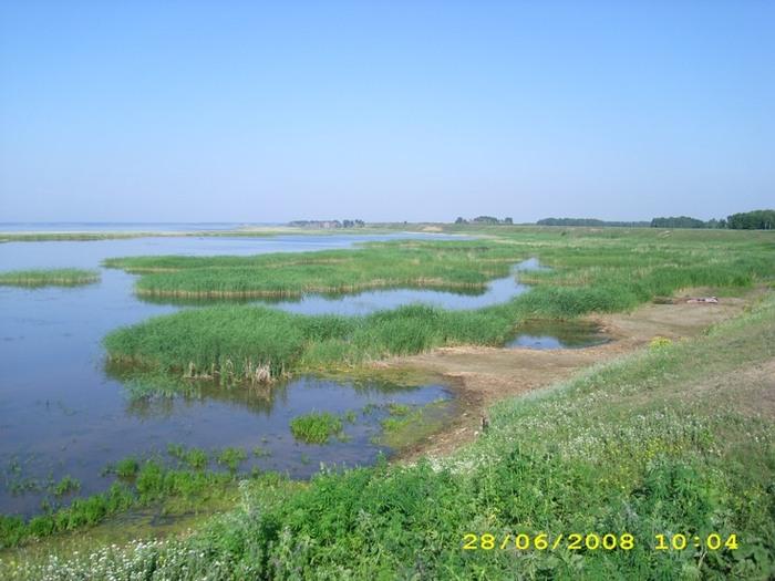 омская область крутинка озеро ик рыбалка