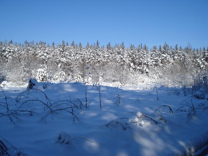 зима под Искитимом