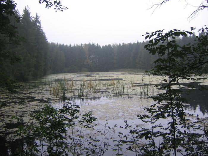 Таёжное озеро..