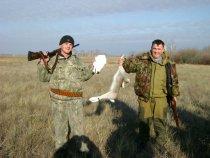 Вот так! Белая куропатка и зайчик!
